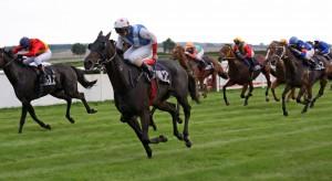 Triple Crown Horses Adding Credits Pedigrees Are Impressive