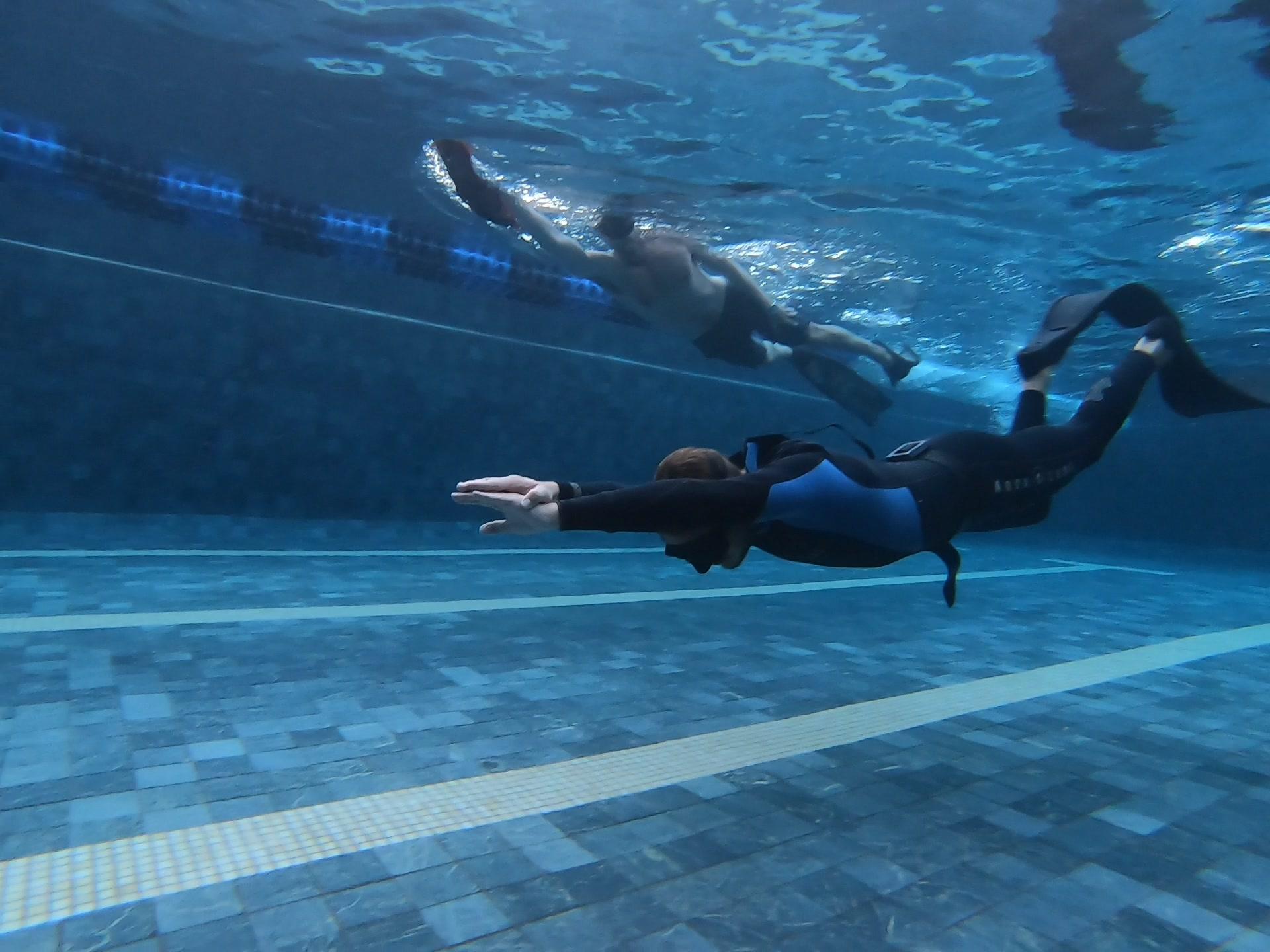 Freedive Trips